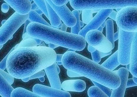 Legionella - Revised Code ACOP L8 Published by HSE